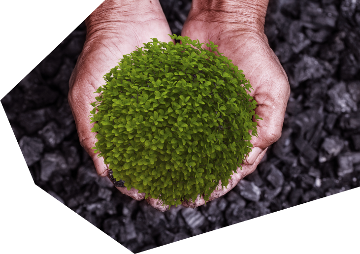 Imagen Objetivos de Desarrollo Sostenible